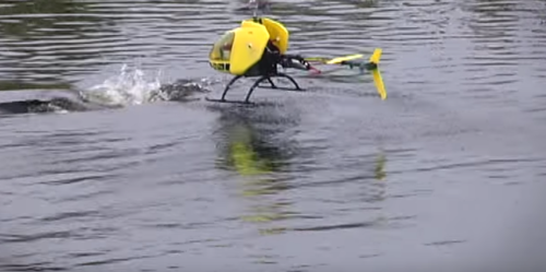 RC Helicopter VS Alligator: Is This Pilot Insane?